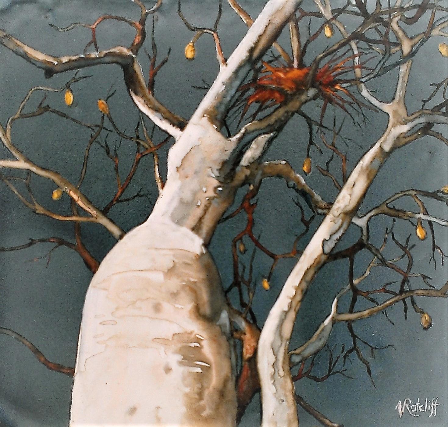 Watercolour - Boab Nest